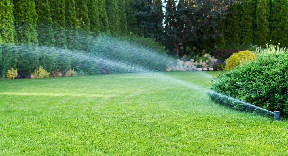 Irrigation-of-the-green-grass-with-sprinkler-system