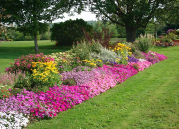flower-bed-ideas-4